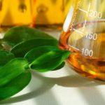 Política Nacional de Biocombustíveis