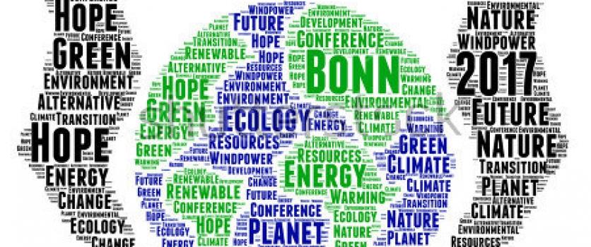CEBDS leva visão do setor empresarial brasileiro para a COP 23