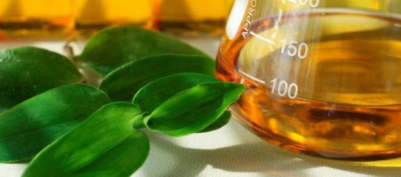 Câmara aprova Política Nacional de Biocombustíveis (RenovaBio)