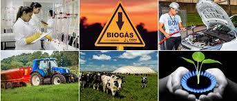 Setor de biogás